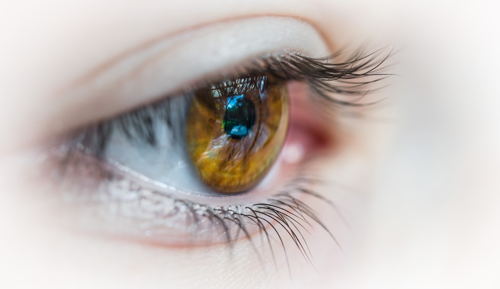 4 Things to Know Before Getting Contact Lenses in Cape Coral